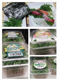 野菜の進化画像