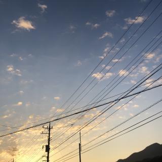 🌼朝のお散歩🌼画像