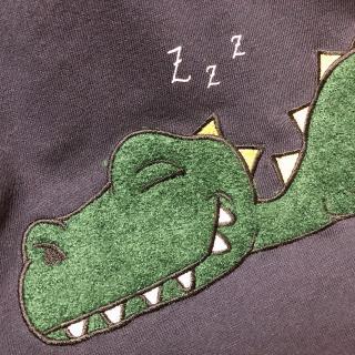 🌼恐竜🌼画像