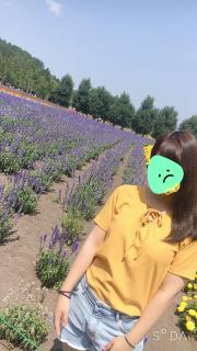 * 私の好きな花 *画像