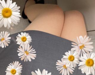 春だ〜🌸画像