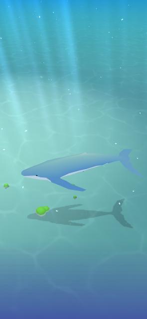 クジラ育て はじめました。