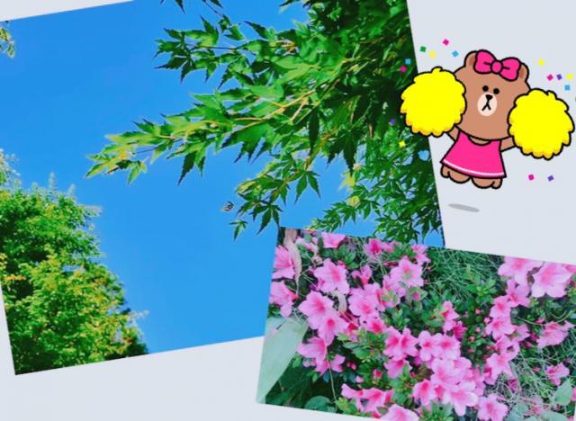 夏〜っ☀️